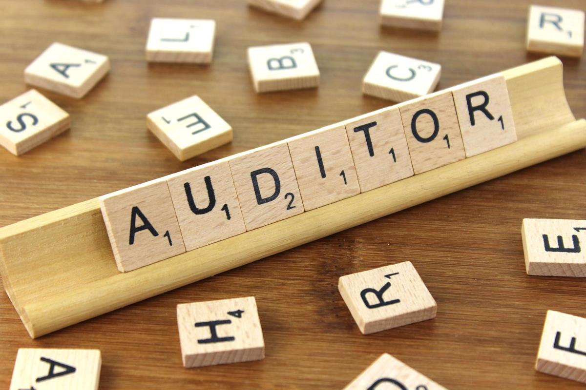 auditor-2